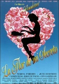Descargar La Flor De Mi Secreto  torrent gratis