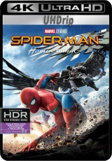 Descargar Spiderman Homecoming  torrent gratis