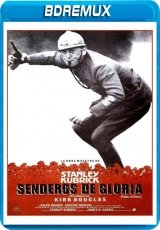 Descargar Senderos de gloria  torrent gratis