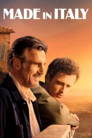 Made in Italy (2020) torrent
