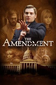 Descargar The Amendment (2020)  torrent gratis