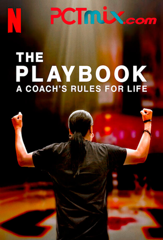 The Playbook torrent